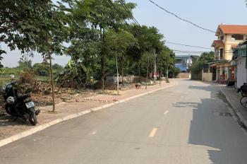 Bán lô đất 68m2 2 mặt tiền, đấu giá Đông Dư, Gia Lâm. LH 0981551988