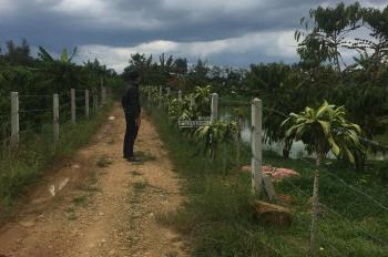 Cần bán 2 sào đất Đinh Công Tráng, Lộc Châu, Bảo Lộc, 850 triệu