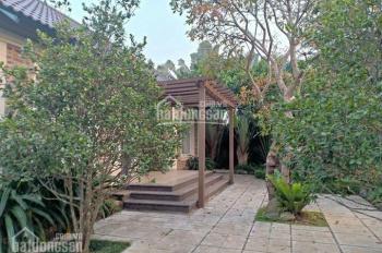 Biệt thự nhà vườn hơn 1000m2 sẵn khuôn viên sang trọng tại Phú Cát, Quốc Oai, giá quá mềm quá đẹp