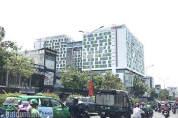 Chính chủ cần bán gấp nhà MT Cộng Hòa, Q. Tân Bình, DT 9x33m XD: 1H + 10L, thu nhập 450 triệu/tháng