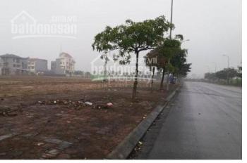 Bán đất Phú Thị, Gia Lâm, 58m2, MT 5m kinh doanh, ô tô chỉ 980tr