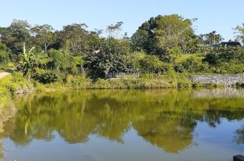 Cần bán lô đất nghỉ dưỡng tại Tiến Xuân, Thạch Thất, Hà Nội, view hồ rất đẹp, giá hợp lý