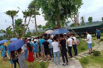 Cần tiền bán gấp 2 lô đất nền biệt thự KĐT Phú Cát: Mr 0865808338
