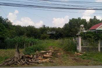 Cần bán đất mặt tiền đường Bùi Thị Điệt - xã Phạm Văn Cội - Củ Chi