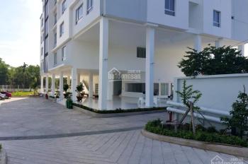Bán tòa nhà đang kinh doanh CHDV cực tốt tại TP Thủ Dầu Một, Bình Dương. LH: 0902911388