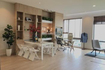 Cho thuê officetel - studio tại trung tâm Phú Mỹ Hưng, tòa Golden King diện tích 34m2 0909669590