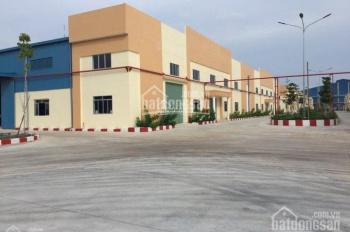 Cho thuê kho xưởng tại khu công nghiệp Vĩnh Lộc, quận Bình Tân, DT: 10.000m2