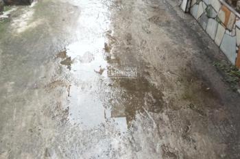 Bán đất tổ Yên Hà, TT. Yên Viên, Gia Lâm, HN, DT: 50m2, vuông vắn rộng 4m, dài 12.5m, hướng Đông