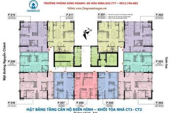 Tôi cần bán CC A10 Nam Trung Yên, 1203: 65.5m2, 2202: 94.8m2, giá 29,5 triệu/m2, LH 096 551 9826