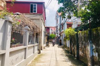 Bán 61m2 Làng Cam, Cổ Bi, Gia Lâm hai mặt thoáng, gần chợ Vàng sầm uất, có nhà cấp 4, LH 0987498004