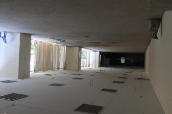 HOT! Cho thuê văn phòng 150-500m2 Thăng Long Invest giá 250.000đ/m2. LH 0961265892