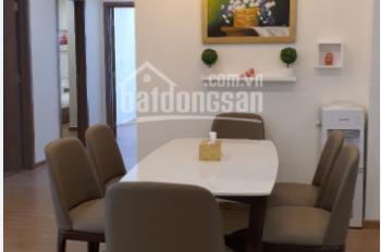 Chính chủ cho thuê căn hộ cao cấp Center Point số 110 Cầu Giấy, 2 PN, CB, 12tr/th. LH 0359724515