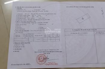 Bán gấp 4013m2 tại huyện Lương Sơn - Hòa Bình