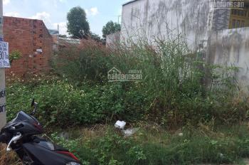 Bán đất Bình Chánh, TP. HCM đường trải nhựa ô tô, diện tích 157m2, sổ hồng đầy đủ