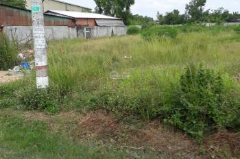 Tôi có lô đất ở đường ĐT 824, gần khu công nghiệp Đức Hòa Đông, giá 300 triệu, 100m2, SHR