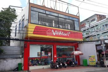 Bán cặp mặt tiền đường Tân Thành, 10x19m nở hậu, đang cho Vinmart thuê 50tr/tháng. Giá 30 tỷ TL