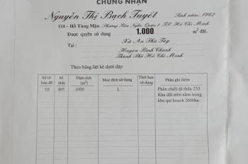Bán đất Bình Chánh, giá 2tỷ2, 1000m2
