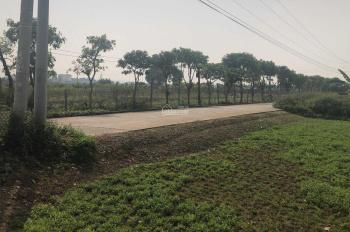 Cần bán nhanh mảnh đất 48m2 tại xã Cổ Bi