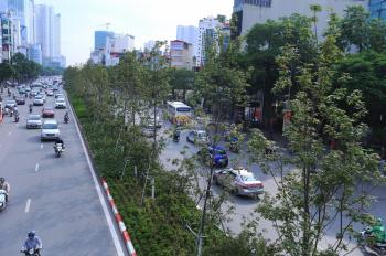 Bán nhà biệt thự phố Hoàng Cầu, ô tô tránh 91m2 x 4t, giá 13.8 tỷ bán gấp có thương lượng