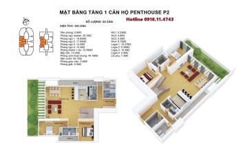 Bán Penthouse Discovery Complex - S:353-441.6m2 CK 5.5% - Tặng Nội thất tới 1.15 tỷ. LH 0918114743