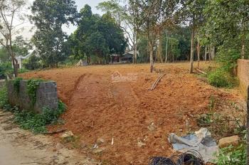 Cần chuyển nhượng lô đất 5040m2 đất làm trang trại nhà vườn khu nghỉ dưỡng tại Phú Mãn, Quốc Oai