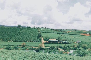 Đất nền Bảo Lộc khu nghỉ dưỡng thần tiên cảnh - view hồ - đồi thông - sổ sẵn 290tr/ 1 nền