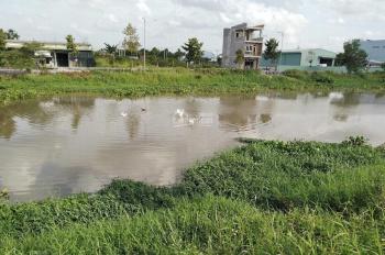 Bán đất Đường Kênh Ba Bò, P. Bình Chiểu, Thủ Đức, TP. HCM