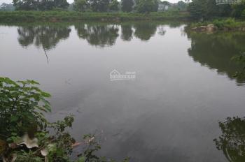 Cần chuyển nhượng đất 6000m2 đã có khuôn viên cơ bản giá siêu rẻ tại Tiến Xuân, Thạch Thất, HN