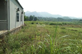 Cần bán đất 600m khu tái định cư giáo viên Yên Bài - Ba Vì.LH 0977645890