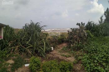 Bán lô đất view sát biển 19,5m x 20m, trong đó 300m2 đất ở, thôn An Trân, xã Bình Hải, Thăng Bình