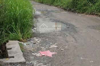 Đất MT đường lớn ở Tp. HCM chỉ gần 4tr/m2, đất 3 MT đường Trần Đại Nghĩa, xã Lê Minh Xuân, BC