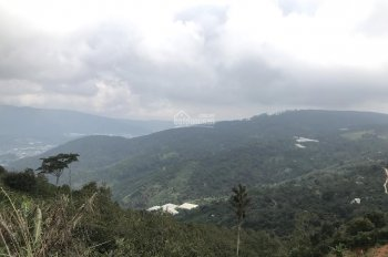 Đất nông nghiệp Trạm Hành, Đà Lạt chuyển đổi được thích hợp đầu tư 3500m2