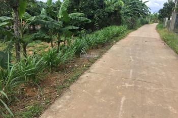 Bán đất thổ cư, đất vườn có sẵn cam, bưởi, mít mặt tiền đan 80m2, ô tô tới đất, 2 căn nhà cấp 4