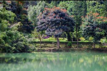 Bán đất nền Bảo Lộc full thổ cư sổ riêng từng nền, vị trí đẹp view hồ nằm ngay nút thắt cao tốc