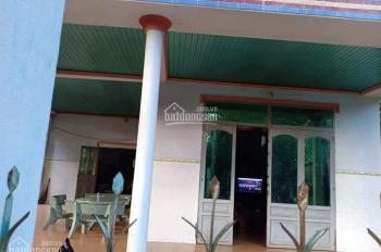 Bán nhà đất 31x53m có nhà cấp 4 đường bê tông xã Minh Tân
