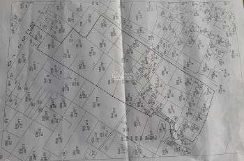 Đất ruộng ấp 2, xã Tân Đông huyện Thạnh Hóa, Long An. Mặt tiền Quốc Lộ 62 và sông Vàm Cỏ