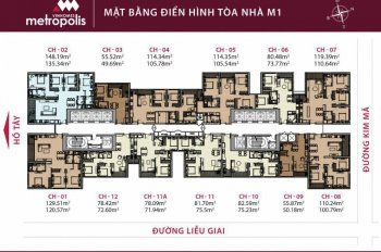 Chính chủ cần bán gấp căn M3.08.11A Vinhomes Metropolis Liễu Giai 114.3m2 nội thất tiêu chuẩn CĐT
