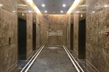 Chính chủ bán gấp căn hộ chung cư đắt giá tại quận Tây Hồ - Sun Grand City - Thụy Khuê