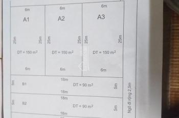 Chuyển nhượng lô đất sổ đỏ tại phường Minh Đức, quận Đồ Sơn, Hải Phòng, đã phân lô