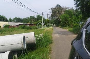 Chính chủ bán đất Củ Chi, 5,3 mẫu, giá 30 tỷ, Sổ riêng đầy đủ, xã Phú Hòa Đông gần Vineco