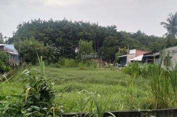 Cần bán đất mặt tiền đường Nguyễn Thị Rành, xã An Nhơn Tây, Củ Chi