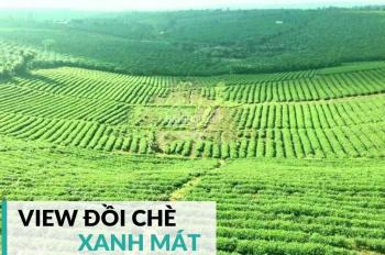 Tuyệt phẩm view hồ Bảo Lộc. Giá chỉ 300tr/nền