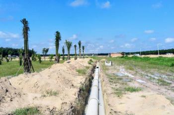 Đất nền giá rẻ ngay trung tâm thị xã bến cát. Lh: 0335144792