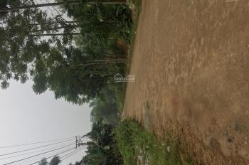 BAn đất làm kho xưởng Hoà Thạch Quốc Oai cách Quốc lộ 21 là 500 m