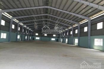 Kho xưởng trong và ngoài KCN Tân Bình DT 200m2, 500m2, 1000m2, và 1500m2