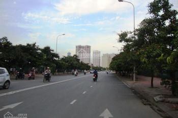 Cho thuê văn phòng tại Thành Thái diện tích 500m2, giá 200 nghìn/m2/tháng