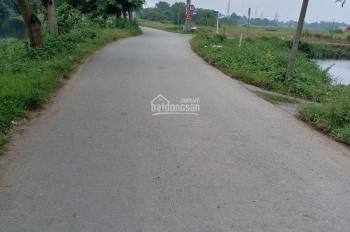 Bán đất 2 MT đường số 1 nối dài, khu Nam Hùng Vương, P. An Lạc, Q. Bình Tân, 4x20m, 3.850 tỷ