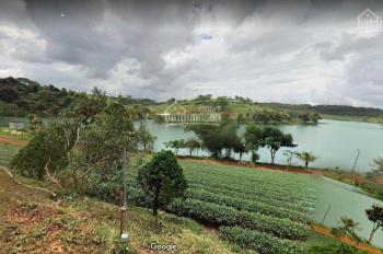 Đất nền Bảo Lâm - Đà Lạt nằm trong khu đô thị sinh thái nghỉ dưỡng giá 350tr/lô. LH: 0937391659