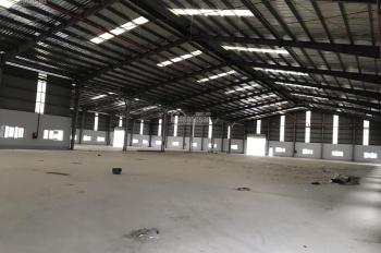 Cần cho thuê kho xưởng 20000m2 khu vực 10800m2 kho, có PCCC tự động, XD theo tiêu chuẩn