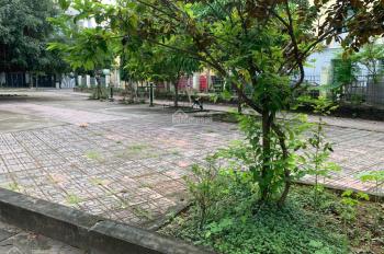 Cho thuê đất MT Bùi Tá Hán, DT 8*20m, giá 18tr/th HĐ 5 năm An Phú, quận 2